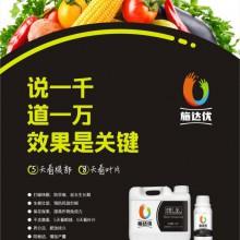 蔬菜基地专用冲施药肥茄子缺素快速补充氮磷钾原厂生产治病生根