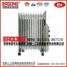 二工促销防爆取暖器电热油汀各种型号密闭式电热油汀防爆