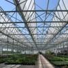 玻璃温室大棚建设哪家好|山东结实耐用的玻璃温室大棚