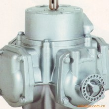加油机流量计(RSJ-60)