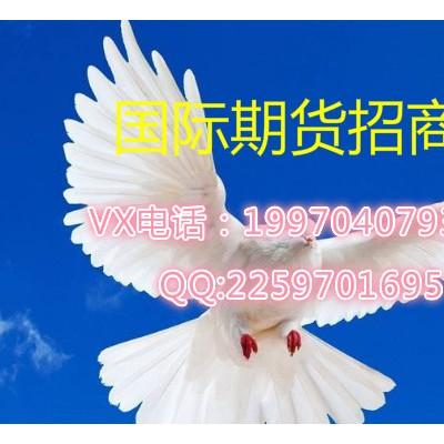 新华国际期货专业期货软件信管家诚招代理