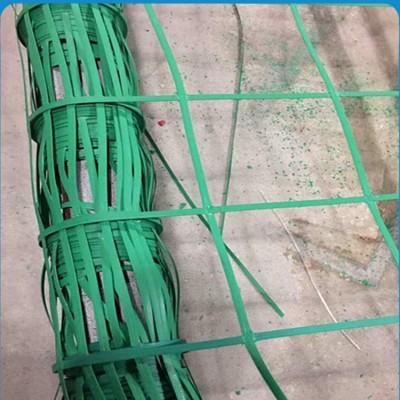 甘肃省15*15孔山体绿化植物攀爬网格 绿色植物攀爬网