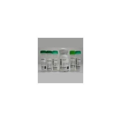 碘代N-乙胺生产厂家,权威价格