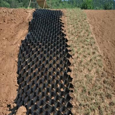 桂林用于护坡绿化边坡固定蜂巢土工格室