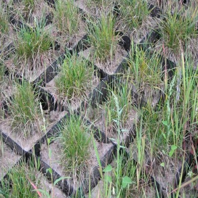 贵州蜂巢约束系统生态绿化护坡现货销售