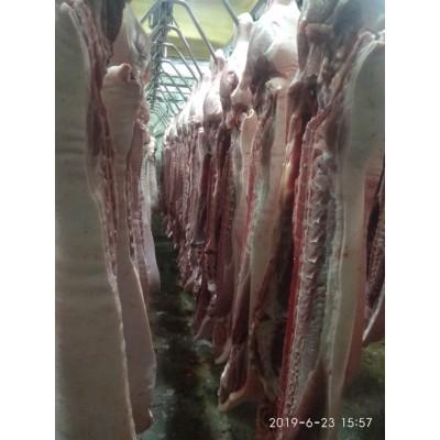 猪肉批发及零售