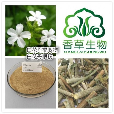 白花丹提取物批发价 假茉莉粉130目 白花丹根流浸膏生产商