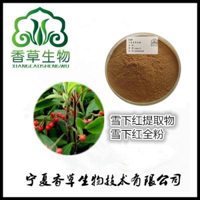雪下红提取物 毛茎紫金牛粉水溶型 毛罗伞茎叶浓缩液批发价