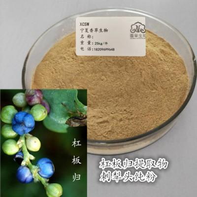杠板归纯粉生产商  贯叶蓼浓缩液出厂价 杠板归粉130目