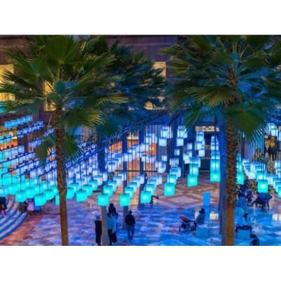 如何创意设计主题公园互动式灯光艺术装置