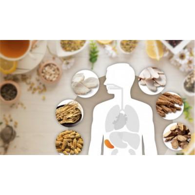 防疫养生调脾胃 位元堂带您了解健脾养生中药材