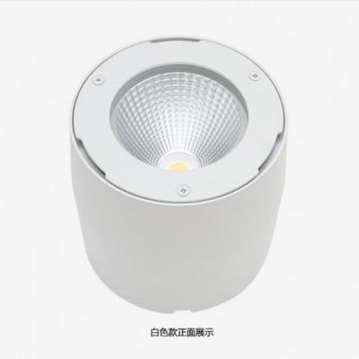 40W防水LED明装筒灯厂家直销