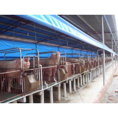 养殖猪场卷帘布厂家直销-挡风马场卷帘布 防水篷布