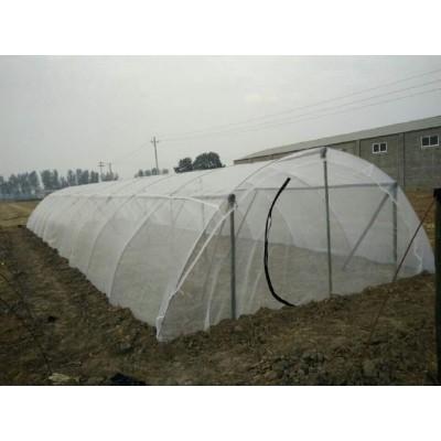 蚂蚱网厂家生产全新料蝈蝈养殖网质量好蚂蚱网袋