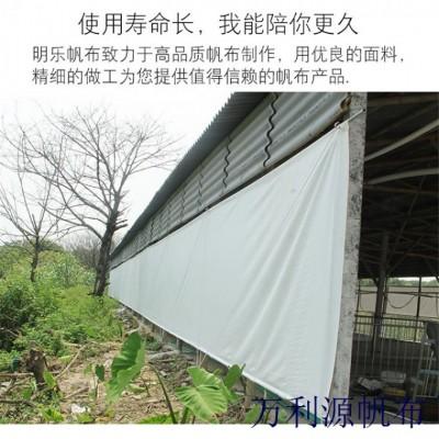 厂家直销pvc双面涂塑防水猪场卷帘布 透光保温牛场卷帘定做