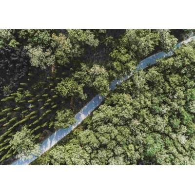 洛阳VR720全景无人机拍摄 项目航拍视频制作