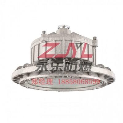 源头厂家250W防爆灯具防腐防尘耐冲击欢迎选购