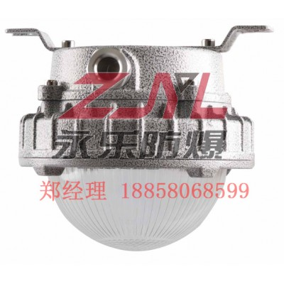 LED防爆灯具30W现货供应吸顶式防爆照明灯