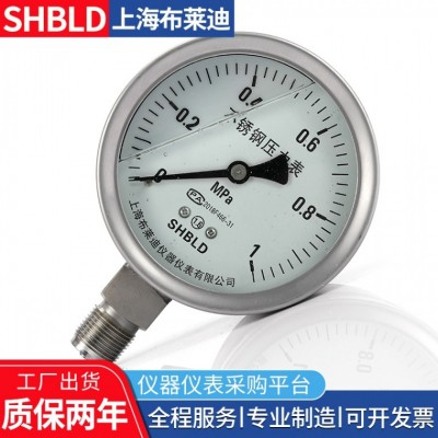 布莱迪YPF-100B-Z不锈钢耐震膜片压力表
