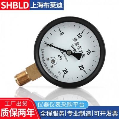 布莱迪YEF-100不锈钢膜盒压力表