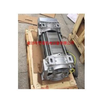 意大利进口油侵式电机45KW沉油式电机